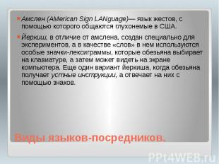 Виды языков-посредников. Амслен (AMerican Sign LANguage)— язык жестов, с помощью