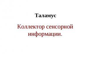 Таламус Коллектор сенсорной информации.