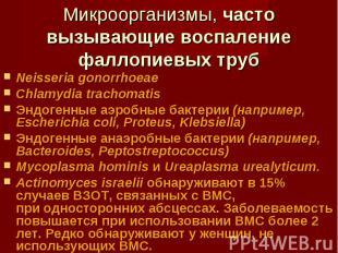 Neisseria gonorrhoeae Neisseria gonorrhoeae Chlamydia trachomatis Эндогенные аэр