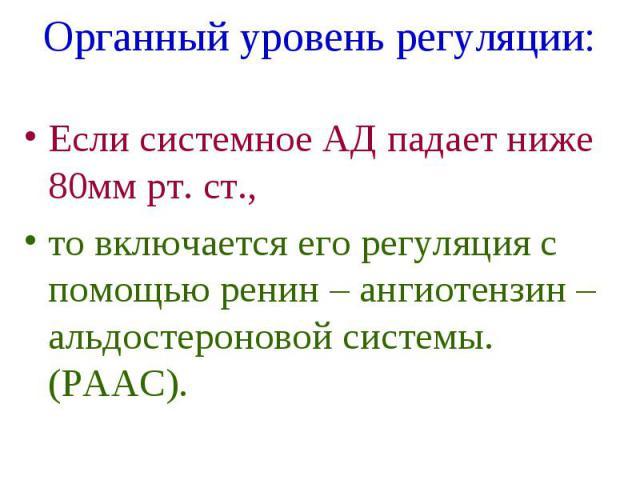 Органный уровень регуляции: Если системное АД падает ниже 80мм рт. ст., то включается его регуляция с помощью ренин – ангиотензин – альдостероновой системы. (РААС).