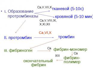 I. Образование протромбиназы