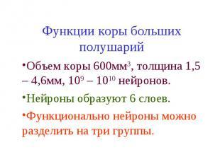 Функции коры больших полушарий Объем коры 600мм3, толщина 1,5 – 4,6мм, 109 – 101