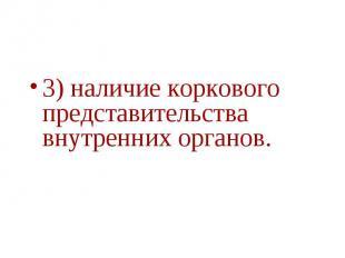 3) наличие коркового представительства внутренних органов.