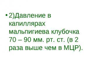 2)Давление в капиллярах мальпигиева клубочка 70 – 90 мм. рт. ст. (в 2 раза выше