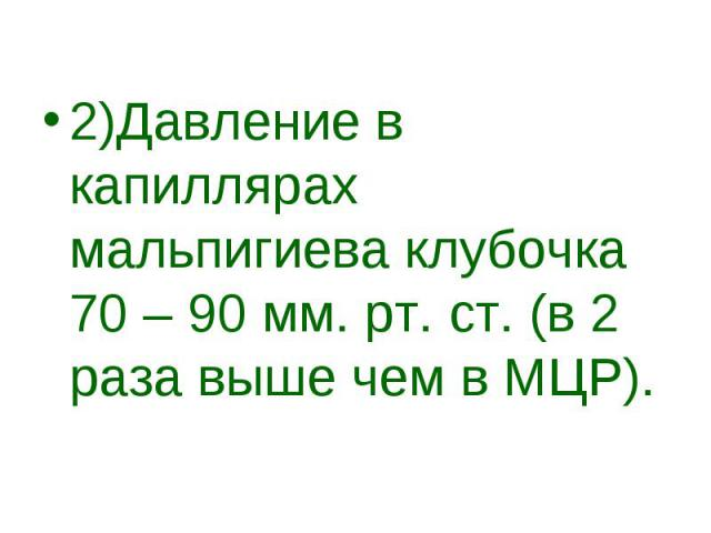 2)Давление в капиллярах мальпигиева клубочка 70 – 90 мм. рт. ст. (в 2 раза выше чем в МЦР).