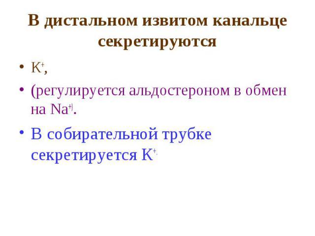 В дистальном извитом канальце секретируются К+, (регулируется альдостероном в обмен на Na+). В собирательной трубке секретируется К+.