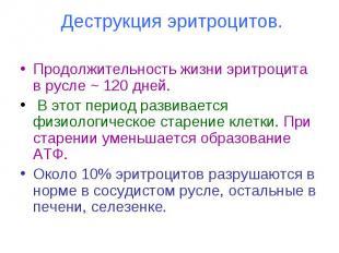Деструкция эритроцитов. Продолжительность жизни эритроцита в русле ~ 120 дней. В