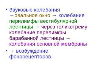 Звуковые колебания →овальное окно → колебание перилимфы вестибулярной лестницы →