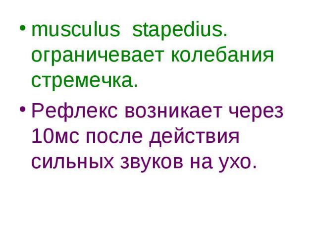 musculus stapedius. ограничевает колебания стремечка. musculus stapedius. ограничевает колебания стремечка. Рефлекс возникает через 10мс после действия сильных звуков на ухо.