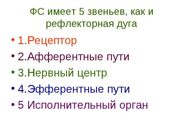 ФС имеет 5 звеньев, как и рефлекторная дуга 1.Рецептор 2.Афферентные пути 3.Нервный центр 4.Эфферентные пути 5 Исполнительный орган