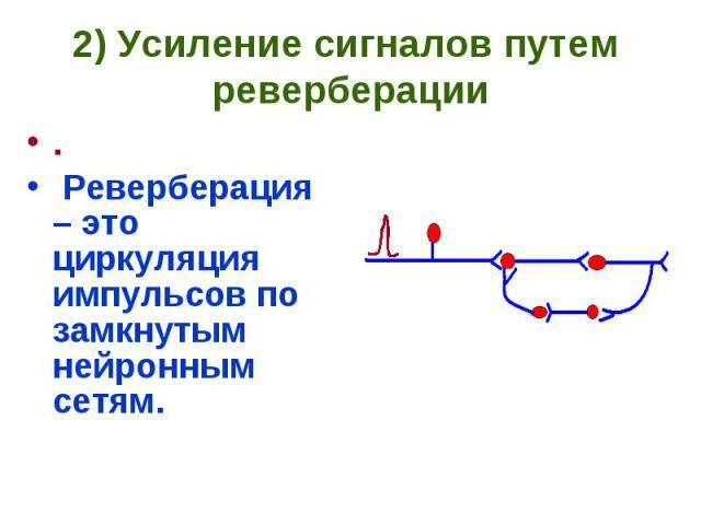 2) Усиление сигналов путем реверберации . Реверберация – это циркуляция импульсов по замкнутым нейронным сетям.