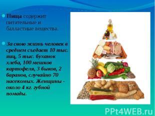Пища содержит питательные и балластные вещества. Пища содержит питательные и бал