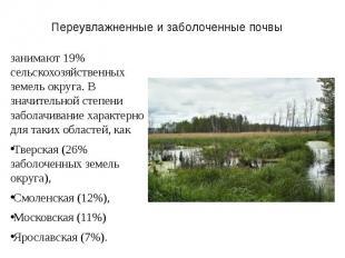 Переувлажненные и заболоченные почвы занимают 19% сельскохозяйственных земель ок