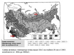 Сумма активных температур почвы выше 10оС на глубине 20 см