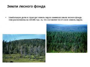 Земли лесного фонда Наибольшую долю в структуре земель округа занимали земли лес