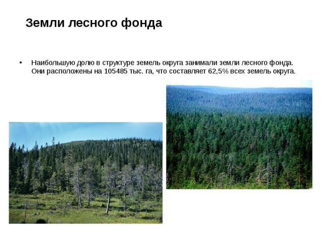 Земли лесного фонда Наибольшую долю в структуре земель округа занимали земли лесного фонда. Они расположены на 105485 тыс. га, что составляет 62,5% всех земель округа.