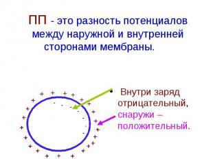 ПП - это разность потенциалов между наружной и внутренней сторонами мембраны. Вн