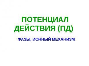 ПОТЕНЦИАЛ ДЕЙСТВИЯ (ПД) ФАЗЫ, ИОННЫЙ МЕХАНИЗМ