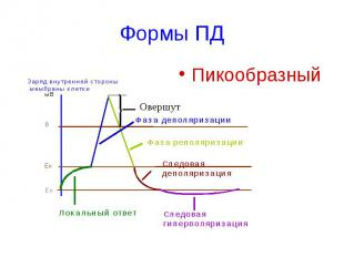 Формы ПД Пикообразный