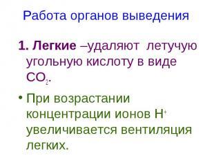 1. Легкие –удаляют летучую угольную кислоту в виде СО2. 1. Легкие –удаляют летуч