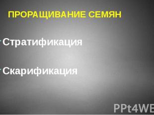 ПРОРАЩИВАНИЕ СЕМЯН Стратификация Скарификация