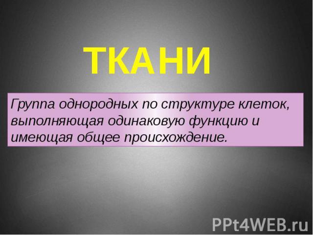 ТКАНИ