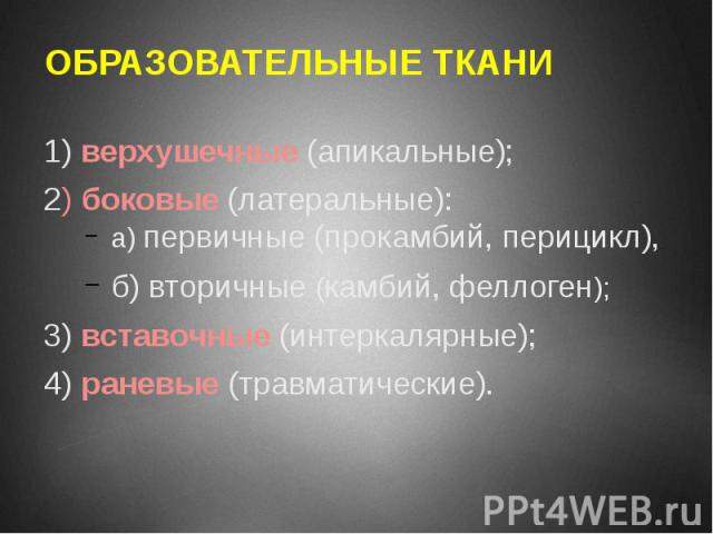 ОБРАЗОВАТЕЛЬНЫЕ ТКАНИ 1) верхушечные (апикальные); 2) боковые (латеральные): а) первичные (прокамбий, перицикл), б) вторичные (камбий, феллоген); 3) вставочные (интеркалярные); 4) раневые (травматические).