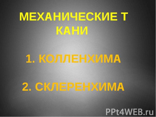 МЕХАНИЧЕСКИЕ ТКАНИ 1. КОЛЛЕНХИМА 2. СКЛЕРЕНХИМА