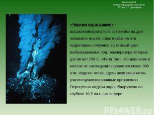 «Черные курильщики» - высокотемпературные источники на дне океанов и морей. Свое