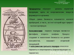 Консументами первого порядка являются фитофаги, второго- зоофаги. Процесс создан