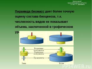 Пирамида биомасс дает более точную оценку состава биоценоза, т.к. численность ви