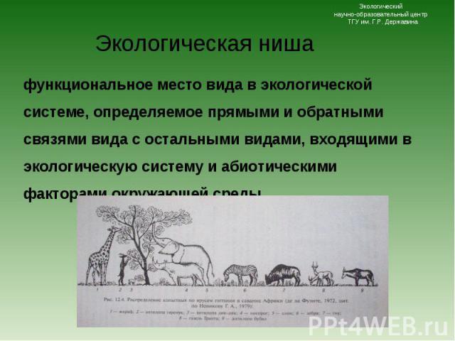 функциональное место вида в экологической системе, определяемое прямыми и обратными связями вида с остальными видами, входящими в экологическую систему и абиотическими факторами окружающей среды. функциональное место вида в экологической системе, оп…