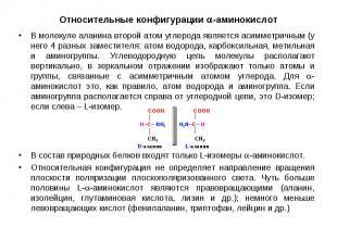 В молекуле аланина второй атом углерода является асимметричным (у него 4 разных