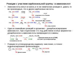Аминокислоты могут вступать в те же химические реакции и давать те же производны