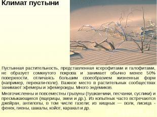 Пустынная растительность, представленная ксерофитами и галофитами, не образует с