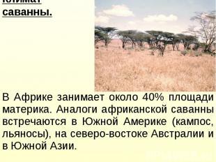 В Африке занимает около 40% площади материка. Аналоги африканской саванны встреч