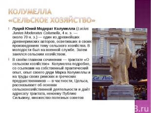 Луций Юний Модерат Колумелла(Lucius Junius Moderatus Columella,4&nbs