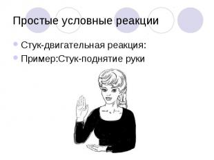 Простые условные реакции Стук-двигательная реакция: Пример:Стук-поднятие руки