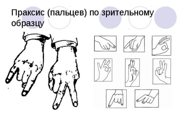Праксис (пальцев) по зрительному образцу