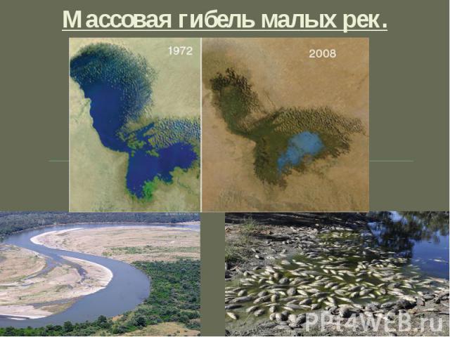 Массовая гибель малых рек. .