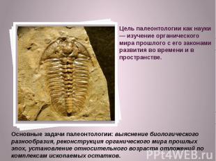 Цель палеонтологии как науки — изучение органического мира прошлого с его закона