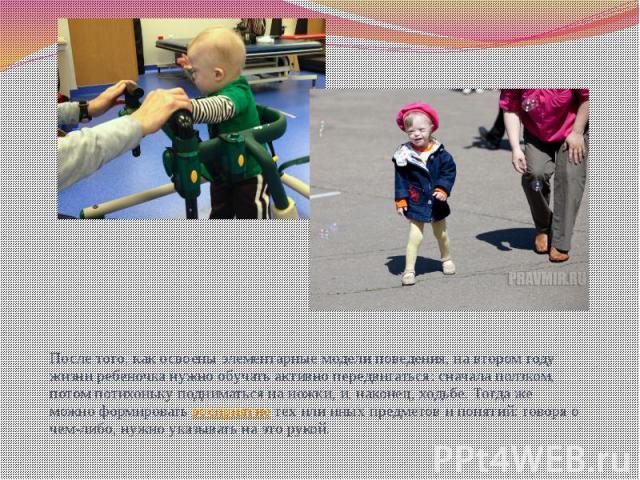 После того, как освоены элементарные модели поведения, на втором году жизни ребеночка нужно обучать активно передвигаться: сначала ползком, потом потихоньку подниматься на ножки, и, наконец, ходьбе. Тогда же можно формировать восприятие тех или иных…