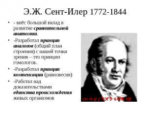 - внёс большой вклад в развитие сравнительной анатомии. - внёс большой вклад в р