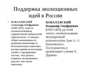 КОВАЛ ЕВСКИЙ Александр Онуфриевич (1840-1901), один из основоположников сравните
