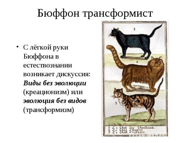 С лёгкой руки Бюффона в естествознании возникает дискуссия: Виды без эволюции (креационизм) или эволюция без видов (трансформизм) С лёгкой руки Бюффона в естествознании возникает дискуссия: Виды без эволюции (креационизм) или эволюция без видов (тра…