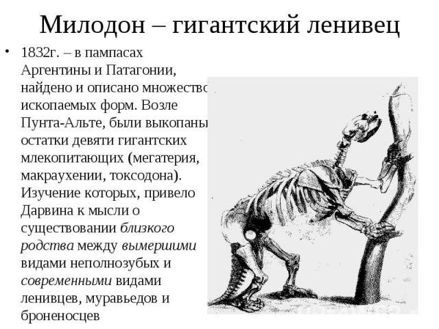 1832г. – в пампасах Аргентины и Патагонии, найдено и описано множество ископаемых форм. Возле Пунта-Альте, были выкопаны остатки девяти гигантских млекопитающих (мегатерия, макраухении, токсодона). Изучение которых, привело Дарвина к мысли о существ…