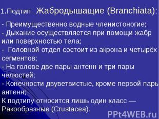 1.Подтип Жабродышащие (Branchiata):