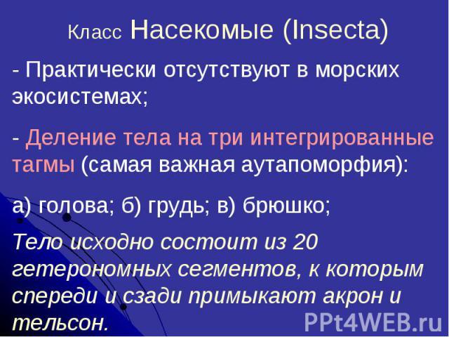 Класс Насекомые (Insecta)