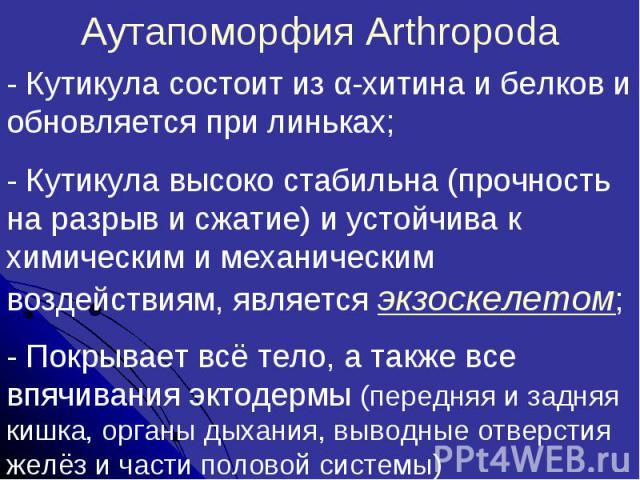 Аутапоморфия Arthropoda