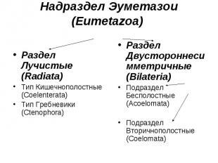 Раздел Лучистые (Radiata) Тип Кишечнополостные (Coelenterata) Тип Гребневики (Ct